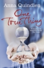 One True Thing - Book