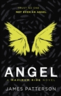 Angel: A Maximum Ride Novel : (Maximum Ride 7) - Book
