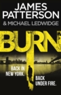 Burn : (Michael Bennett 7). Unbelievable reports of a murderous cult become terrifyingly real - Book