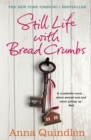 Still Life with Bread Crumbs - Book