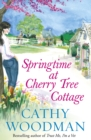 Springtime at Cherry Tree Cottage : (Talyton St George) - Book