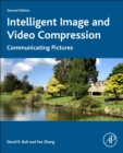 Intelligent Image and Video Compression : Communicating Pictures - Book