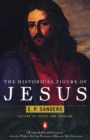 The Historical Figure of Jesus - Book