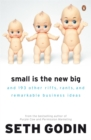 Small is the New Big : And 183 Other Riffs, Rants and Remarkable Business Ideas - Book