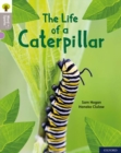 Oxford Reading Tree Word Sparks: Level 1: The Life of a Caterpillar - Book