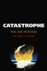 Catastrophe : Risk and Response - eBook
