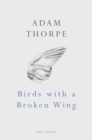 Birds With A Broken Wing - Book