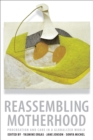 Reassembling Motherhood : Procreation and Care in a Globalized World - eBook