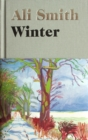 Winter : from the Man Booker Prize-shortlisted author - Book