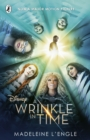 A Wrinkle in Time - Book