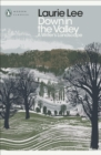 Down in the Valley : A Writer's Landscape - Book