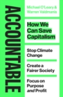 Accountable : How we Can Save Capitalism - eBook