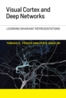 Visual Cortex and Deep Networks : Learning Invariant Representations - eBook