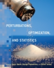 Perturbations, Optimization, and Statistics - eBook