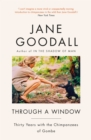 Through A Window - eBook