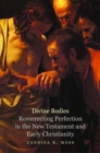 Divine Bodies : Resurrecting Perfection in the New Testament and Early Christianity - Book