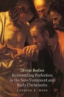 Divine Bodies : Resurrecting Perfection in the New Testament and Early Christianity - eBook