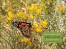 Wings in the Light : Wild Butterflies in North America - Book