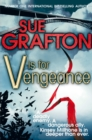 V is for Vengeance - Book