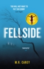 Fellside - eBook