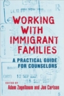 Working With Immigrant Families : A Practical Guide for Counselors - Book