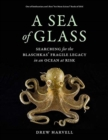 A Sea of Glass : Searching for the Blaschkas' Fragile Legacy in an Ocean at Risk - Book