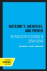Maternity, Medicine, and Power : Reproductive Decisions in Urban Benin - Book