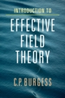 Introduction to Effective Field Theory - Book