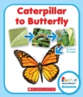 CATERPILLAR TO BUTTERFLY - Book