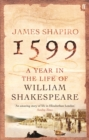1599: a Year in the Life of William Shakespeare - Book