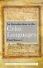 An Introduction to the Celtic Languages - Book