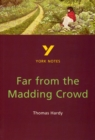 Far from the Madding Crowd: York Notes for GCSE - Book