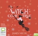 A Witch Come True - Book