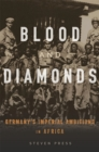 Blood and Diamonds : Germany's Imperial Ambitions in Africa - eBook