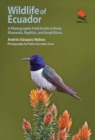Wildlife of Ecuador : A Photographic Field Guide to Birds, Mammals, Reptiles, and Amphibians - Book