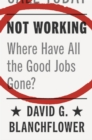 Not Working : Where Have All the Good Jobs Gone? - Book