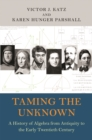 Taming the Unknown : A History of Algebra from Antiquity to the Early Twentieth Century - Book