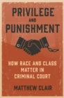 Privilege and Punishment : How Race and Class Matter in Criminal Court - eBook