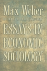 Essays in Economic Sociology - eBook