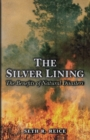 The Silver Lining : The Benefits of Natural Disasters - eBook