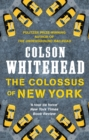 The Colossus of New York - eBook