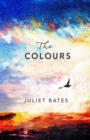The Colours : a captivating, epic historical drama about family, love and loss - eBook