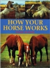 How Your Horse Works - Book