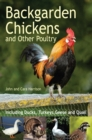 Backgarden Chickens and Other Poultry - eBook