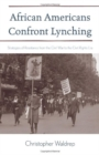 African Americans Confront Lynching : Strategies of Resistance from the Civil War to the Civil Rights Era - Book