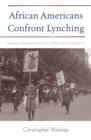 African Americans Confront Lynching : Strategies of Resistance from the Civil War to the Civil Rights Era - eBook