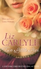 Two Little Lies : Number 2 in series - Book