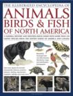 Illustrated Encyclopedia of Animals, Birds and Fish of North America - Book