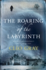 The Roaring of the Labyrinth - Book