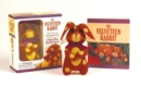 The Velveteen Rabbit Mini Kit : Plush Toy and Illustrated Book - Book